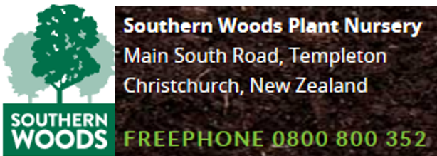 Southern Woods
